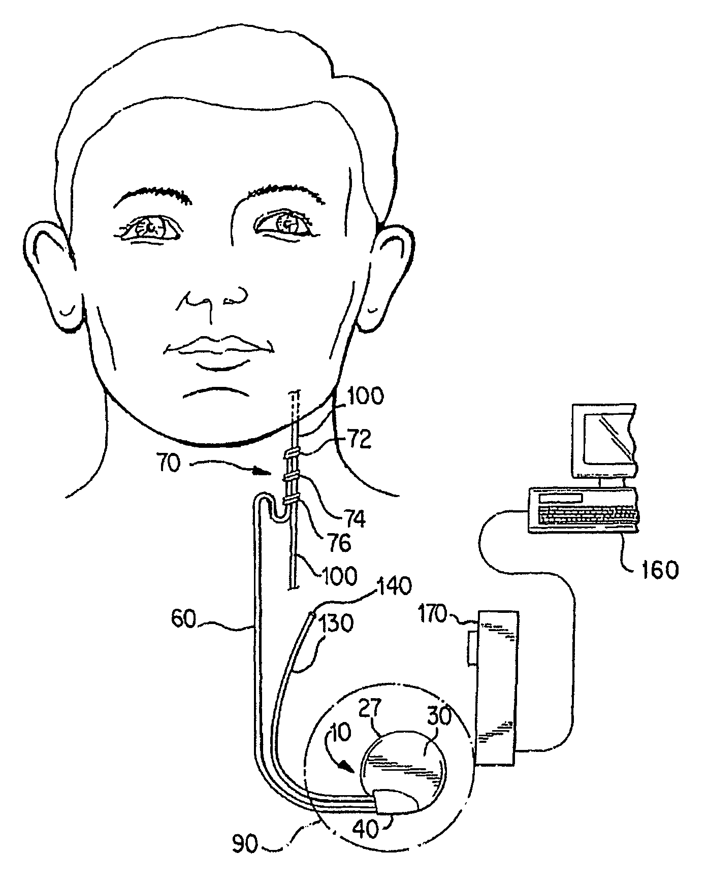 Cranial Nerve Face Drawing With Numbers at GetDrawings
