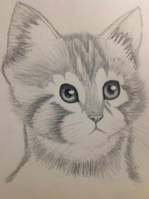 pencil shading drawing animals sketch easy drawings animal sketching shades sweet heart getdrawings paintingvalley
