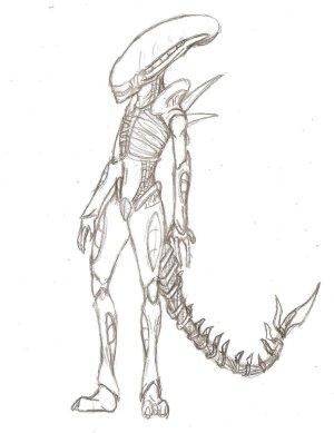 Simple Xenomorph Drawings