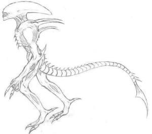 xenomorph drawing easy getdrawings