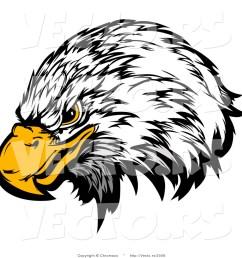 1024x1044 bald eagle clipart eagle eyes [ 1024 x 1044 Pixel ]
