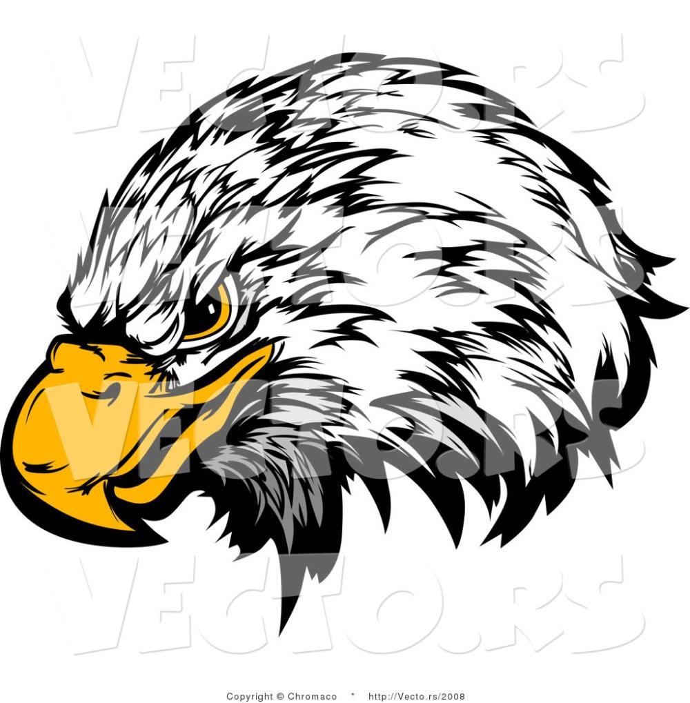 medium resolution of 1024x1044 bald eagle clipart eagle eyes