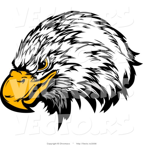 small resolution of 1024x1044 bald eagle clipart eagle eyes
