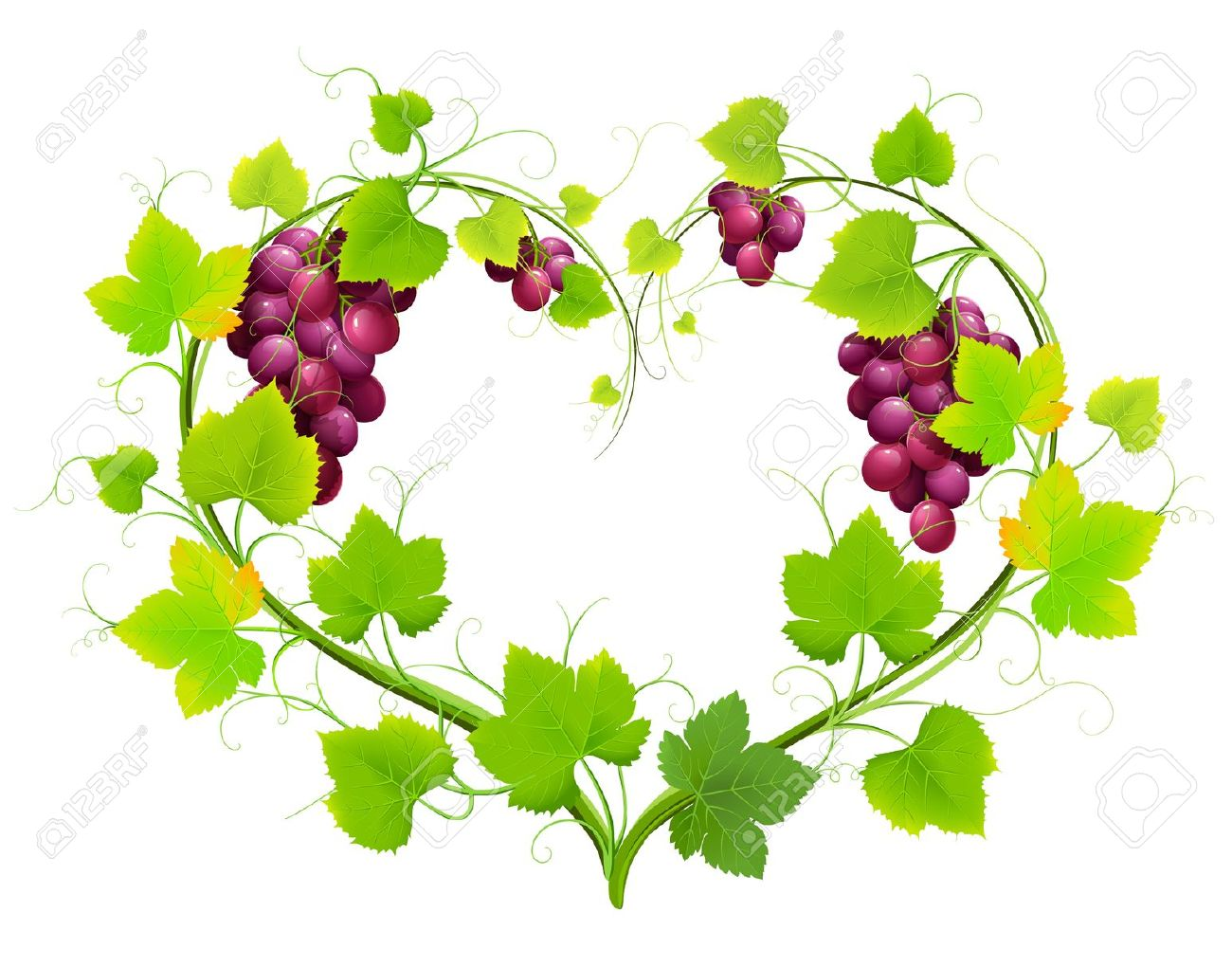 hight resolution of 1300x1020 grape vine vector clipart 71 clipart