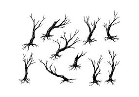 tree branch vector free
