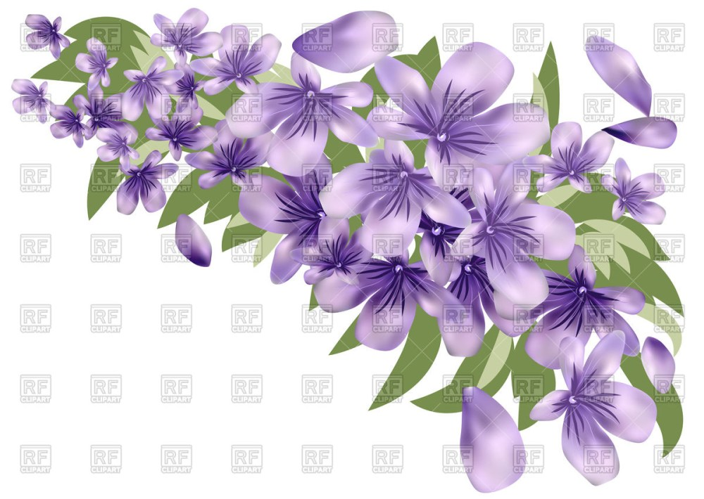 medium resolution of 1200x852 lavender flower with leaves vector image vector artwork of