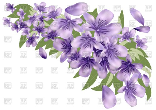 small resolution of 1200x852 lavender flower with leaves vector image vector artwork of