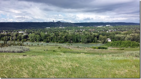 Bowmont June 9 2014 (5)