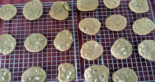 Chocolate Chip Cookies March 2015