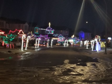 Christmas Lights at Candy Cane Lane