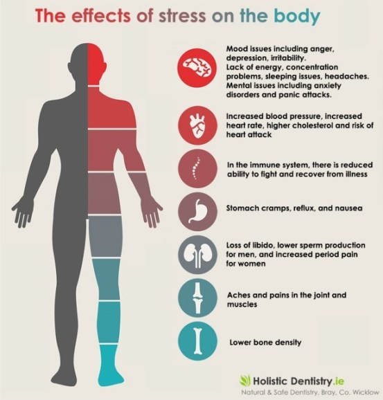 stress-on-the-body-a