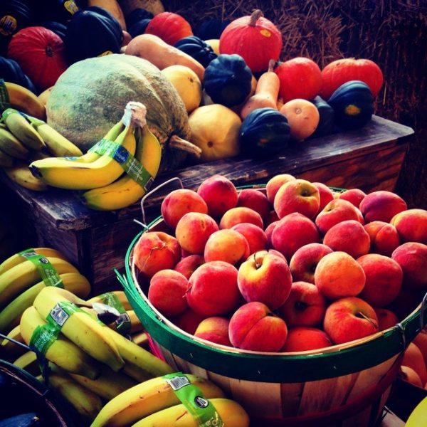 Google diet plan