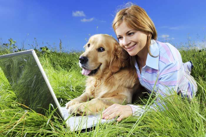 Discover The Right Online Dog Trainer