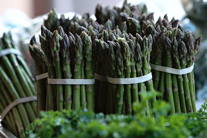 Kandungan Gizi dan Khasiat Sayuran Asparagus