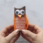 Owl Craft Toilet Paper Roll Paper Roll Owl