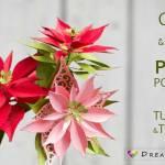 Paper Poinsettia Craft Paper Poinsettia Tutorial And Template C