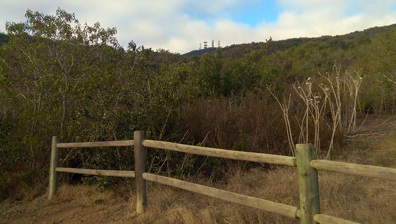 San Diego Hiking: A View to Black Mountain Summit