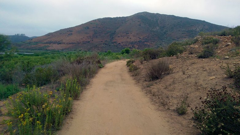Bernardo Mountain Summit Trail