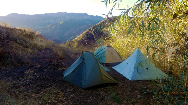 Willet Springs Campsite in Los Padres National Forest