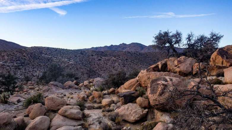 Backpacking in Joshua Tree