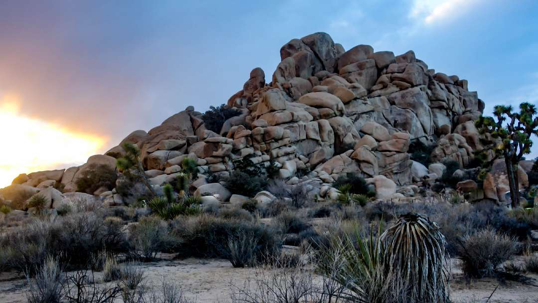 Backpacking Joshua Tree