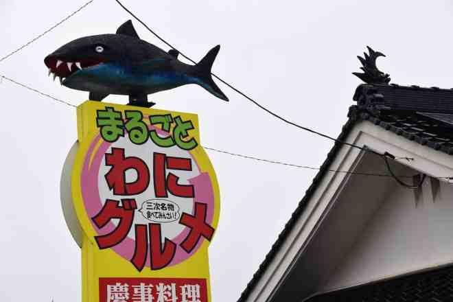 Miyoshi Shark
