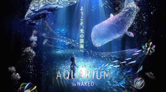 aquarium naked 3d projection