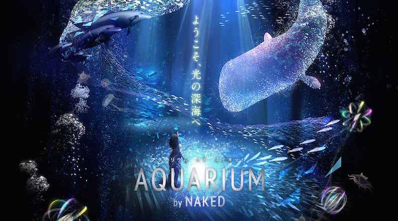 aquarium naked 3d projection