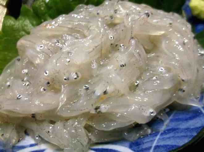 Shirasu whitebait