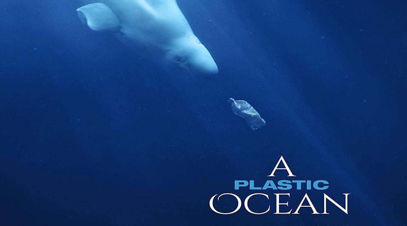 A plastic ocean film screening in Hiroshima Japan