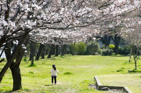 Hakushima Kyukencho Park