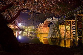 your best shot spring 2014 kintai bridge cherry blossom at night