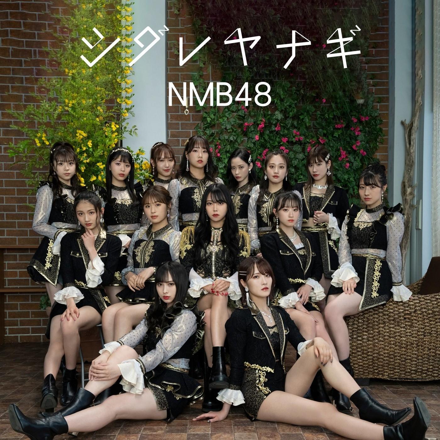[Single] NMB48 – シダレヤナギ (Special Edition) [FLAC + MP3 320 / WEB] [2021.06.16]