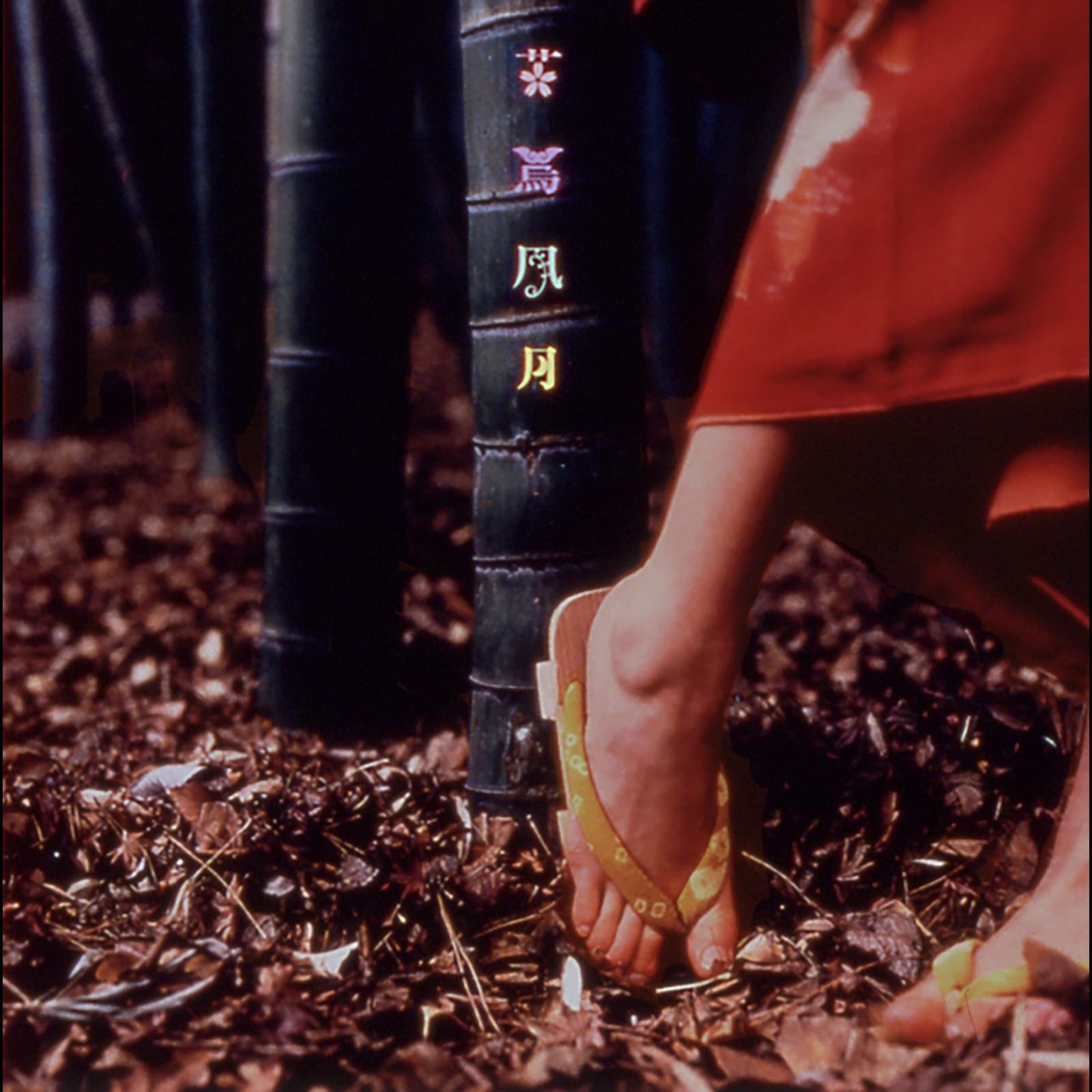 [Album] スピッツ (Spitz) – 花鳥風月 (30th Anniversary Edition – 2021) [FLAC + MP3 / WEB] [1999.03.25]