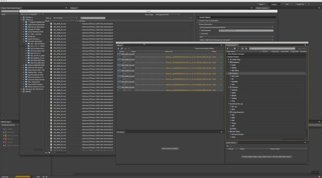Adobe Prelude For MacOSX