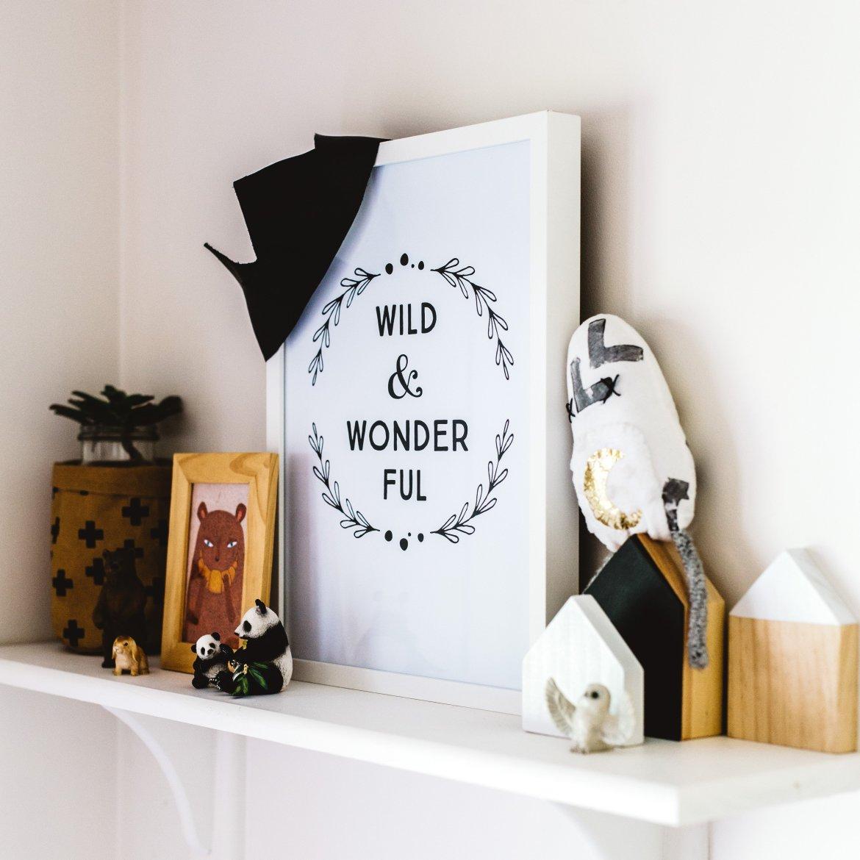 wild & wonderful