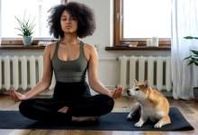 Seven Days Meditation Challenge for Complete Beginners