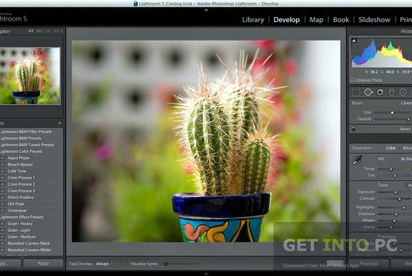 Adobe Lightroom 5.6 Free Download