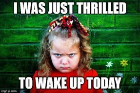 Thrilled-to-wake-up-Funny-Good-Morning-Meme