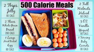 500 calorie meals