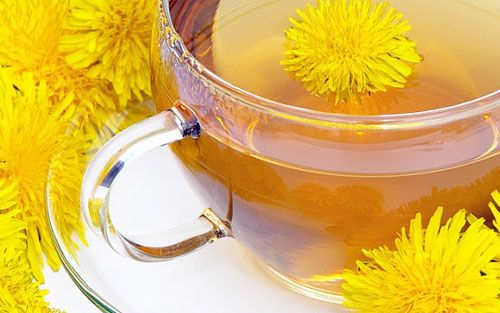 Natural diuretic - Dandelion leaf tea