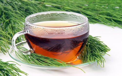Horsetail tea natural diuretics drink