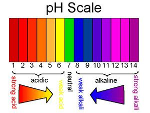 pH Scale of your bloodstream