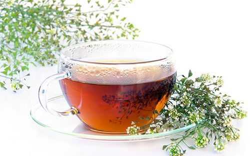 Yarrow tea diuretic
