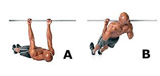 Workout 2: Inverted row