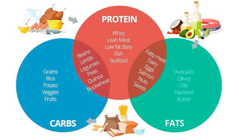 Diet focus