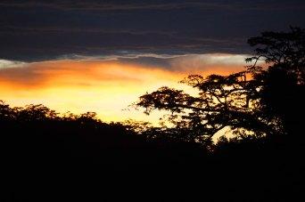 34 sunset sm