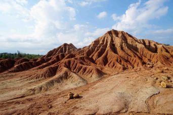 2 desertscape sm