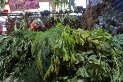 29 herbs sm