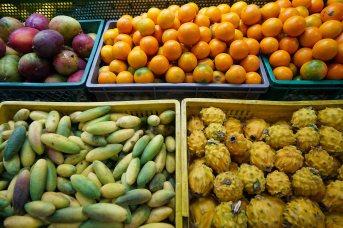 33 fruit in bins sm